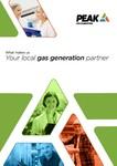 Peak Gas Brand Promise